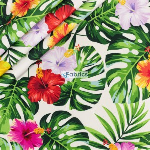 Leaves and exotic flowers
