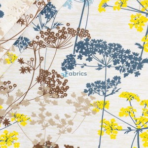 Blue yellow and brown fennel flowers