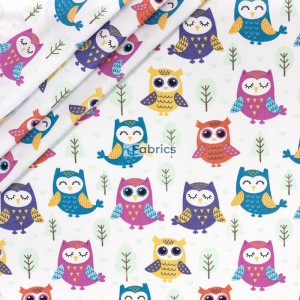 Colorful owls on a white background