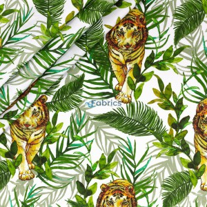 Tigers and leaves on a white background