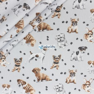 Dog and puppies on a light grey background